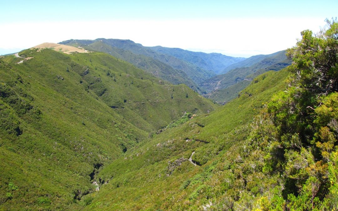 Madeira Island – Levada Walks
